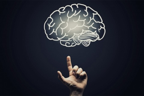 Neuromarketing y Ecommerce: La Pareja Perfecta